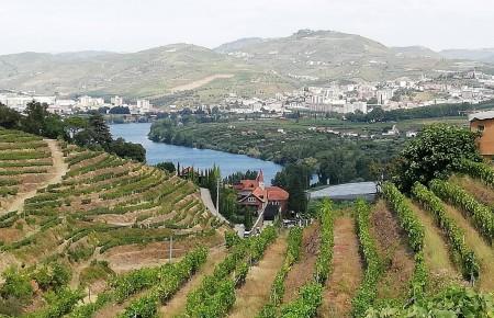 Próxima Caminhada PR2 – Trilhos do Vinho do Porto